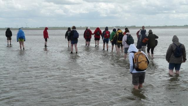 Wattwanderung zur Insel Spiekeroog am 15.09.2018