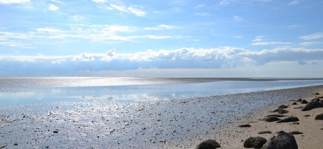 Spannende Wattwanderung zur Insel Spiekeroog